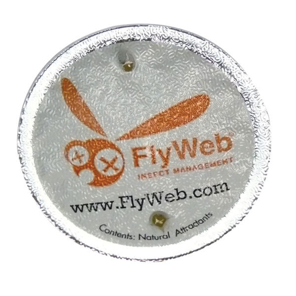 FlyWeb Fruit Fly Trap Step Three